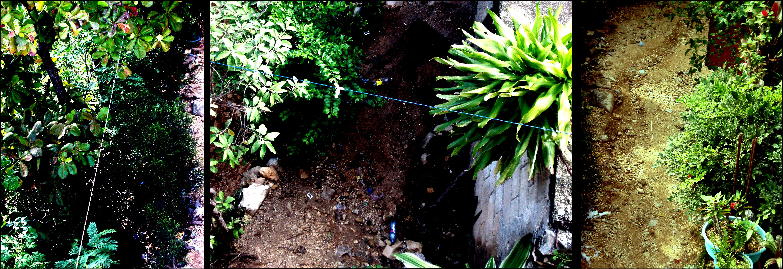 Vertikale_Gärten